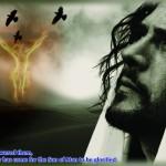 HÃY ĐỂ ĐỜI MÌNH BỊ NGHIỀN NÁT NHƯ ĐỨC KITÔ