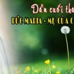 Dẫn dâng hoa 31/05/2019 – Đức Maria, Mẹ của các gia đình