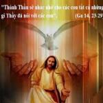 LỜI CHÚA CHÚA NHẬT TUẦN VI PHỤC SINH NĂM C (26/5/2019) – (Ga 14, 23-29) – THÁNG HOA KÍNH ĐỨC MẸ.