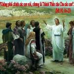 LỜI CHÚA THỨ SÁU TUẦN XIV THƯỜNG NIÊN NĂM CHẴN 2020 (10/7/2020) – (Mt 10, 16-23) Thánh Phêrô NGUYỄN KHẮC TỰ (Thầy Giảng) – Thánh Antôn NGUYỄN HỮU QUỲNH (NĂM) (Trùm họ). –  Lễ nhớ.