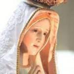 Hiр╗Єp th├┤ng cр║Дu nguyр╗Єn vр╗Џi ─Љр╗Ђn Fatima cho Viр╗Єt Nam. Nр║┐u ─Љ├Б thр║Цy hр╗Јa ngр╗Цc, bр║Аn c├▓n cк░р╗Юi ─Љк░р╗Бc kh├┤ng?