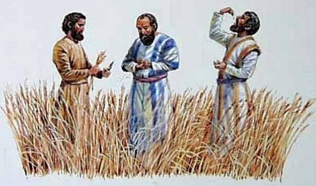 Con Người làm chủ ngày sabát (17.1.2017 – Thứ ba Tuần 2 Thường niên)