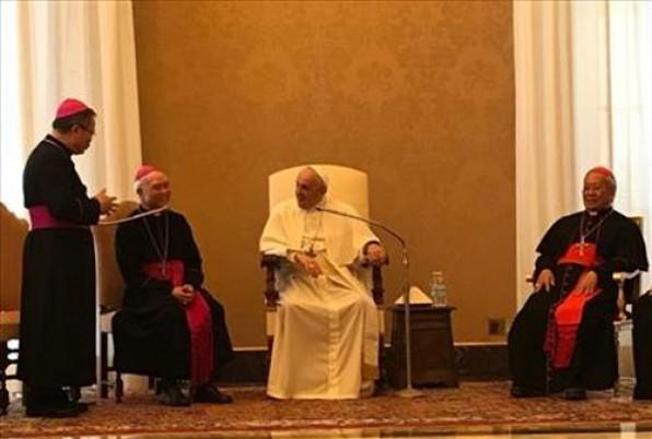 Hội đồng Giám mục Việt Nam viếng thăm Ad Limina: Diễn từ triều yết Đức Thánh Cha Phanxicô