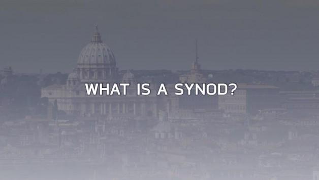 Thượng hội đồng là gì và tại sao nó lại được thảo luận thường xuyên?