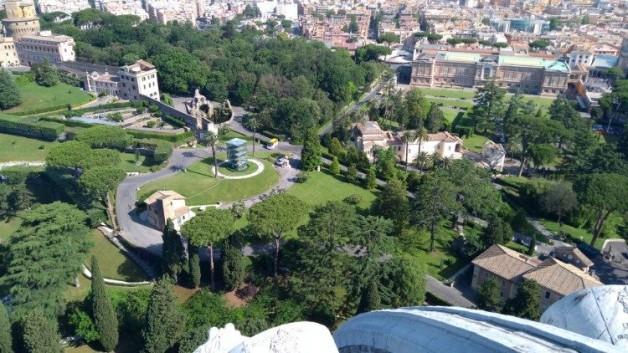 Nhân lễ thánh Phanxicô, ĐTC sẽ trồng một cây sồi trong vườn Vatican