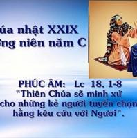 LỜI CHÚA CHÚA NHẬT XXIX THƯỜNG NIÊN NĂM C (20/10/2019) – (Lc 18, 1- 8) – THÁNG MÂN CÔI KÍNH ĐỨC MẸ Dụ ngôn QUAN TÒA BẤT CHÍNH VÀ BÀ GÓA QUẤY RẦY