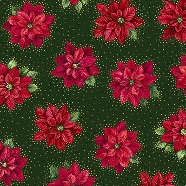 Mùa Giáng Sinh, mùa hoa trạng nguyên về