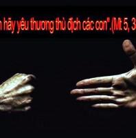 LỜI CHÚA CHÚA NHẬT VII THƯỜNG NIÊN NĂM A 2020 (23/02/2020) – (Mt 5, 38 – 48) – ĐỨC GIÊSU KIỆN TOÀN LUẬT MÔSÊ (tiếp theo)
