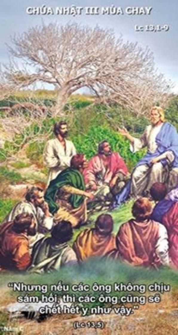 Lời Chúa Chúa Nhật III mùa Chay năm C (28/02/2016) – (Lc 13, 1-9) – MÙA CHAY THÁNH 2016