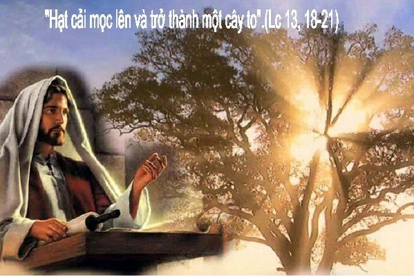 LỜI CHÚA THỨ BA TUẦN XXX THƯỜNG NIÊN NĂM CHẴN 2020 (27/10/2020) – (Lc 13, 18 – 21) – THÁNG MÂN CÔI KÍNH DỨC MẸ