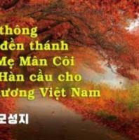 7g tối 25/8: Hiệp thông cùng đền thánh Đức Mẹ Mân Côi Nam Hàn cầu cho Sài Gòn và quê hương Việt Nam