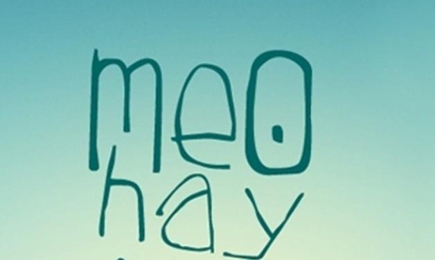 """LƯU LẠI NGAY 46 MẸO """"THẦN KÌ"""" CHỮA NHỮNG BỆNH THÔNG THƯỜNG RẤT HAY GẶP MÀ KHÔNG CẦN SỬ DỤNG THUỐC"""