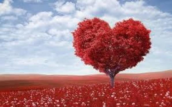 Điều vĩ đại nhất là yêu thương.